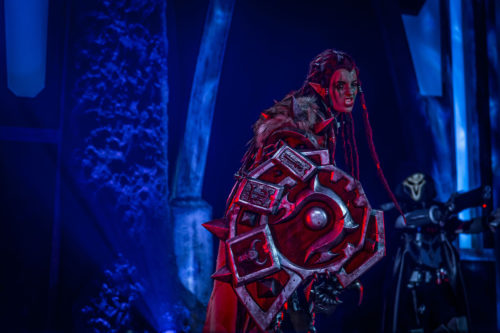 Blizzcon 2015 Costume Contest