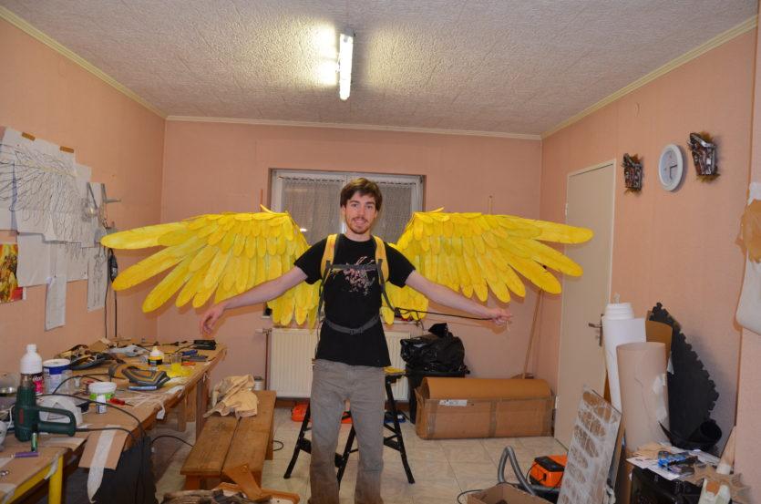 ailes articulées